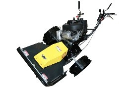 Bank Mowers category of products