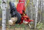 S23 Felling, Processing & Logging Head